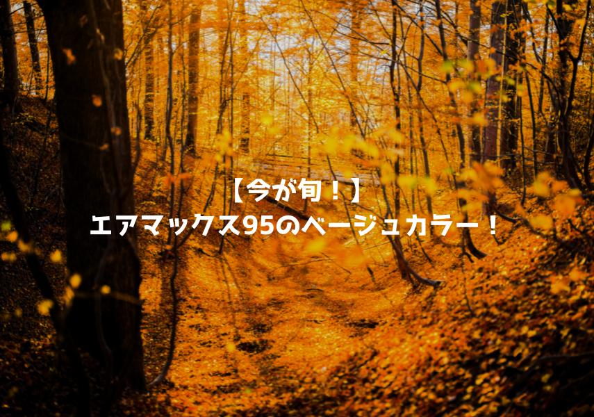 【今が旬!】エアマックス95のベージュカラー!メンズ・レディースのおすすめモデルをピックアップ!