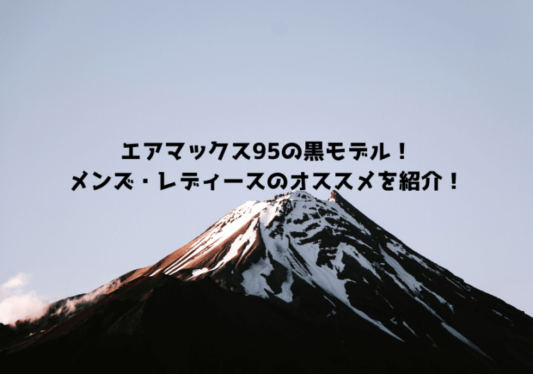 エアマックス95 黒